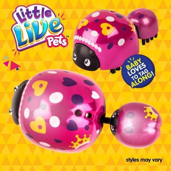 28877 Little Live Pets Ladybug Pack FPS2 (Copy)